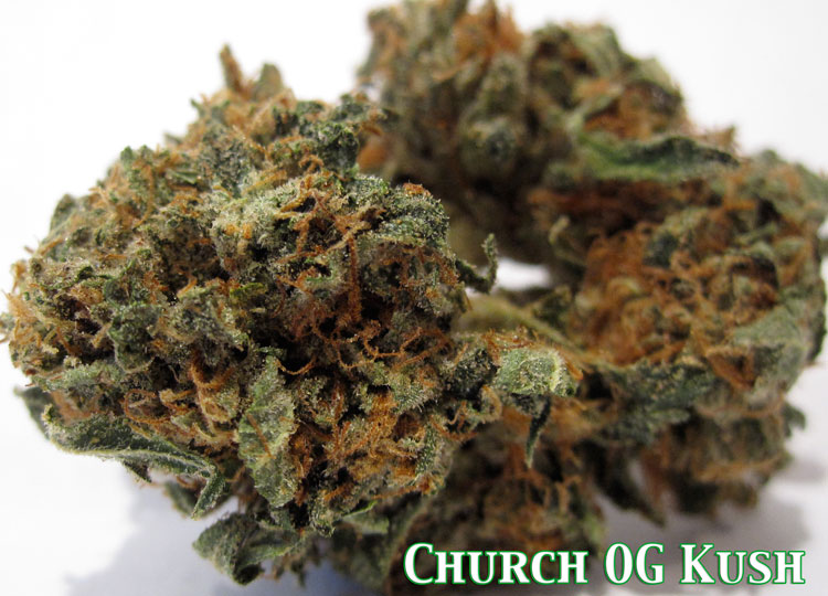 Church OG Kush