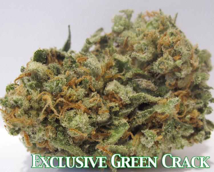 Exclusive Green Crack