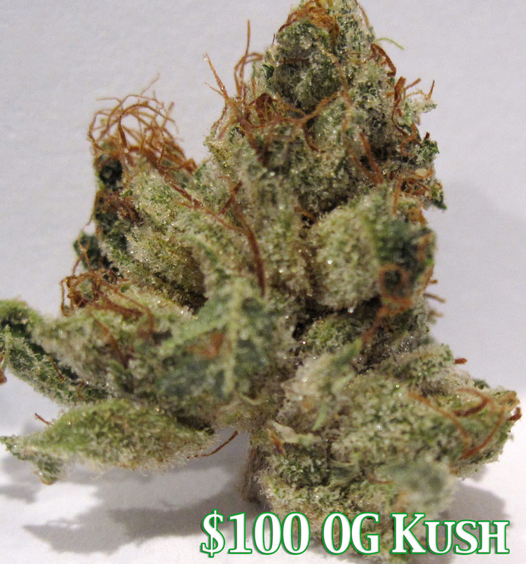 Hundred Dollar OG Kush