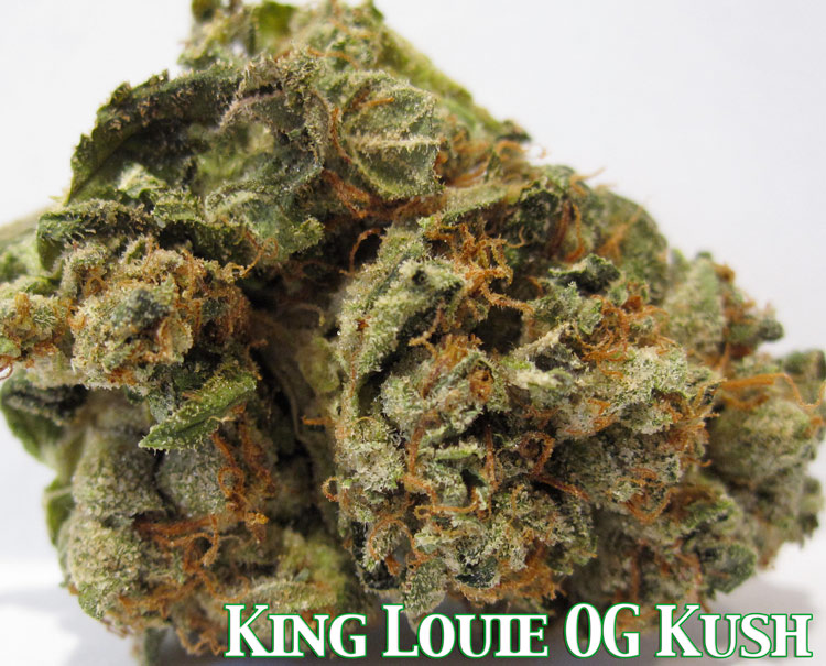 King Louie OG Kush