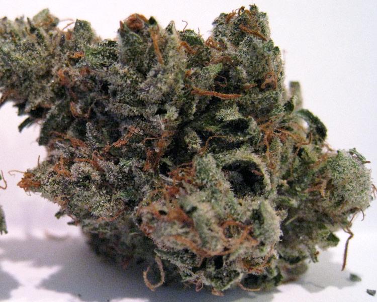 LA Confidential Marijuana Weed