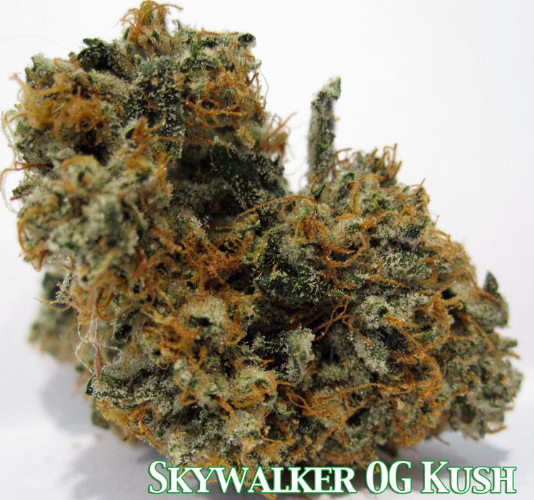 Skywalker OG Kush